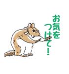 丁寧語を話す動物たち(個別スタンプ:27)