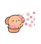 ぽかぽかトイプードル(春~初夏)(個別スタンプ:10)