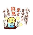 応援✨インコちゃんより心をこめて(個別スタンプ:10)