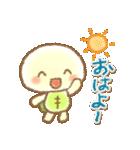 かめ太3(個別スタンプ:01)