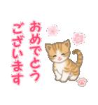 ちび猫 おめでとうスタンプ(個別スタンプ:3)