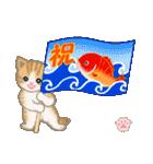 ちび猫 おめでとうスタンプ(個別スタンプ:5)