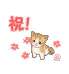 ちび猫 おめでとうスタンプ(個別スタンプ:6)