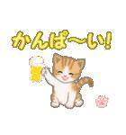 ちび猫 おめでとうスタンプ(個別スタンプ:13)