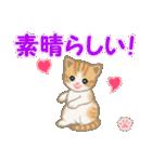 ちび猫 おめでとうスタンプ(個別スタンプ:16)