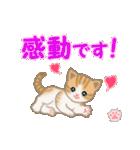ちび猫 おめでとうスタンプ(個別スタンプ:18)