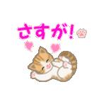 ちび猫 おめでとうスタンプ(個別スタンプ:19)