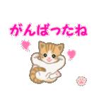 ちび猫 おめでとうスタンプ(個別スタンプ:22)