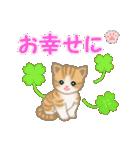 ちび猫 おめでとうスタンプ(個別スタンプ:23)
