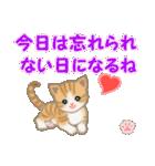 ちび猫 おめでとうスタンプ(個別スタンプ:24)