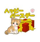 ちび猫 おめでとうスタンプ(個別スタンプ:26)