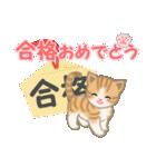 ちび猫 おめでとうスタンプ(個別スタンプ:31)