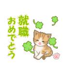 ちび猫 おめでとうスタンプ(個別スタンプ:32)