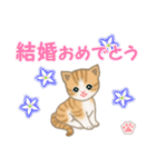 ちび猫 おめでとうスタンプ(個別スタンプ:34)
