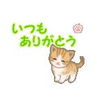 ちび猫 ありがとうスタンプ(個別スタンプ:7)