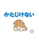 ちび猫 ありがとうスタンプ(個別スタンプ:15)