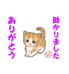 ちび猫 ありがとうスタンプ(個別スタンプ:19)