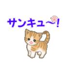 ちび猫 ありがとうスタンプ(個別スタンプ:21)