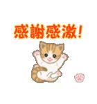 ちび猫 ありがとうスタンプ(個別スタンプ:31)