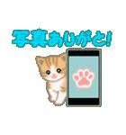 ちび猫 ありがとうスタンプ(個別スタンプ:36)