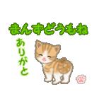 ちび猫 ありがとうスタンプ(個別スタンプ:39)
