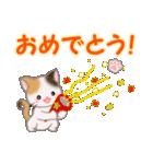 ちび三毛猫 おめでとうスタンプ(個別スタンプ:2)