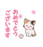 ちび三毛猫 おめでとうスタンプ(個別スタンプ:3)