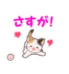 ちび三毛猫 おめでとうスタンプ(個別スタンプ:19)