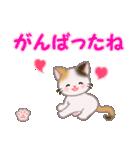 ちび三毛猫 おめでとうスタンプ(個別スタンプ:22)