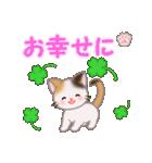 ちび三毛猫 おめでとうスタンプ(個別スタンプ:23)