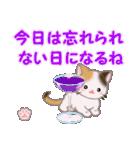 ちび三毛猫 おめでとうスタンプ(個別スタンプ:24)