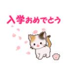 ちび三毛猫 おめでとうスタンプ(個別スタンプ:29)