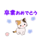 ちび三毛猫 おめでとうスタンプ(個別スタンプ:30)