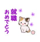 ちび三毛猫 おめでとうスタンプ(個別スタンプ:32)