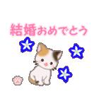 ちび三毛猫 おめでとうスタンプ(個別スタンプ:34)