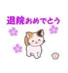 ちび三毛猫 おめでとうスタンプ(個別スタンプ:36)