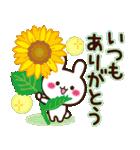 大人かわいい日常【夏に向けて】(個別スタンプ:37)