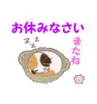 ちび三毛猫 毎日優しいスタンプ(個別スタンプ:4)