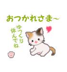 ちび三毛猫 毎日優しいスタンプ(個別スタンプ:6)