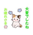 ちび三毛猫 毎日優しいスタンプ(個別スタンプ:8)