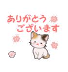 ちび三毛猫 毎日優しいスタンプ(個別スタンプ:13)