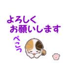 ちび三毛猫 毎日優しいスタンプ(個別スタンプ:24)