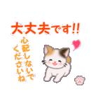 ちび三毛猫 毎日優しいスタンプ(個別スタンプ:25)