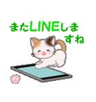 ちび三毛猫 毎日優しいスタンプ(個別スタンプ:30)