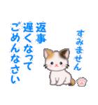 ちび三毛猫 毎日優しいスタンプ(個別スタンプ:31)
