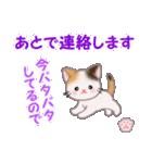 ちび三毛猫 毎日優しいスタンプ(個別スタンプ:32)