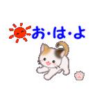 ちび三毛猫 毎日使う言葉(個別スタンプ:1)