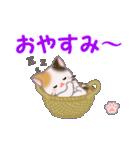 ちび三毛猫 毎日使う言葉(個別スタンプ:5)
