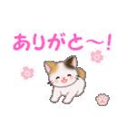 ちび三毛猫 毎日使う言葉(個別スタンプ:13)