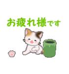 ちび三毛猫 毎日使う言葉(個別スタンプ:17)